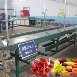 樱桃水果分拣台,分拣水果传送皮带,水果挑拣平台