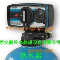 富莱克3150电子型软水器