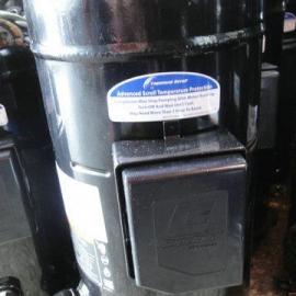 美国谷轮压缩机/冷库压缩机系列