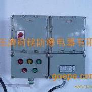河南防爆配电箱・BXM(D)81防爆箱厂家