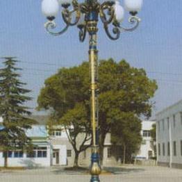 5米庭院灯厂