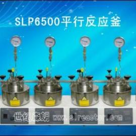 成都SLP6500磁力高压双位平行反应釜