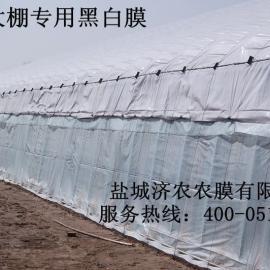 塑料大棚养殖专用长寿黑白膜