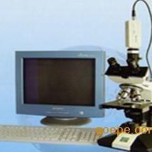 三目生物显微镜(电源) 三目摄像生物显微镜