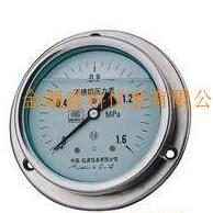 YTN-不锈钢耐震压力表
