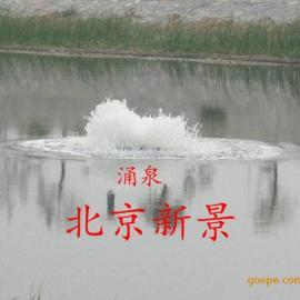 地产景观水治理设备厂家