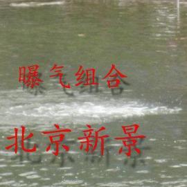 地产景观水治理设备