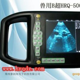 母猪发情测孕仪a超b超机,猪牛测孕仪动物b超机