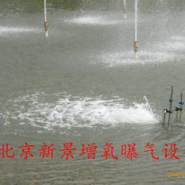 地产景观水治理北京赛车