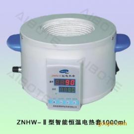 ZNHW型智能数显电热套