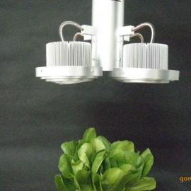 LED北京植物补光灯