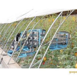 水培蔬菜灌溉用水设备 花卉养殖活化水处理设备