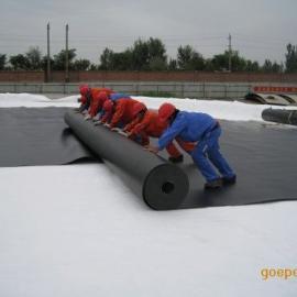 山东防水板厂家 山东防水板生产厂家