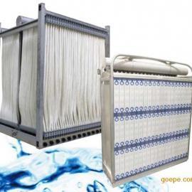 美国GEMBR膜组件中空纤维膜片污水处理系统ZeeWeed 1000
