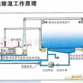 供应游泳馆专用除湿热泵(图)