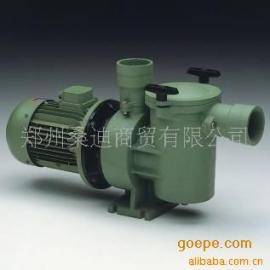 郑州澳大利亚运水高自吸式铸铁水泵