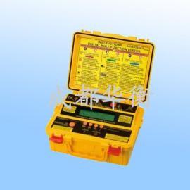 多功能绝缘电阻测试仪BK6175