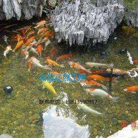 富友水处理一流的鱼池净化过滤技术