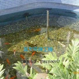 私家别墅锦鲤鱼池生物过滤净化