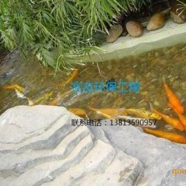苏州市富友园林解决鱼池绿藻青苔的实质问题