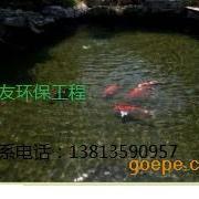江阴市户外锦鲤鱼池生物过滤净化,真正做到养鱼常年无需换水