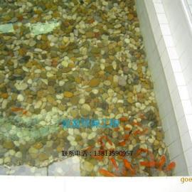 大型鱼池景观水处理的技术、锦鲤鱼池净化