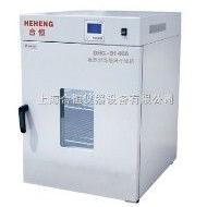 上海300度立式精密烘箱 电热恒温鼓风干燥箱