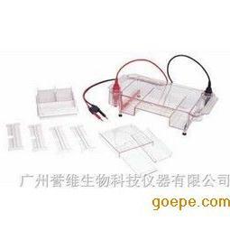 上海天能 HE-120水平电泳槽