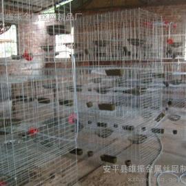 三层12笼位鸽子笼 鸽笼厂家 鸽笼子规格