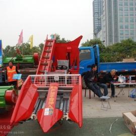 河北秦皇岛小型玉米收割机厂家|邯郸小型玉米收割机直销