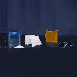 DYCZ-24F双垂直电泳仪/蛋白凝胶电泳仪/电泳仪