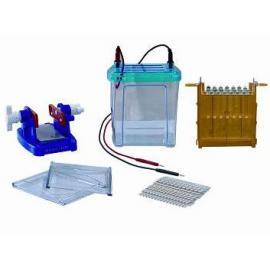 双向电泳槽/一体式双向电泳仪/DYCZ-26B电泳仪
