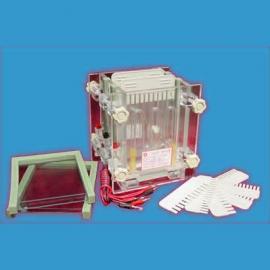 双板夹芯式垂直电泳仪/六一夹芯式垂直电泳仪