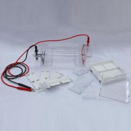 琼脂糖水平电泳仪(槽)/DYCP-31DN型水平电泳仪