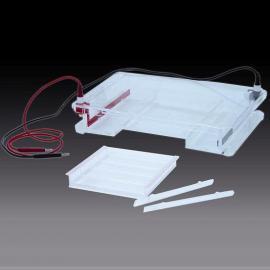 DYCP-31F琼脂糖水平电泳仪/大号琼脂糖水平电泳槽