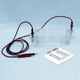 琼脂糖水平电泳仪/电泳槽DYCP-32B