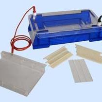 琼脂糖水平电泳槽/DYCP-33B琼脂糖水平电泳仪