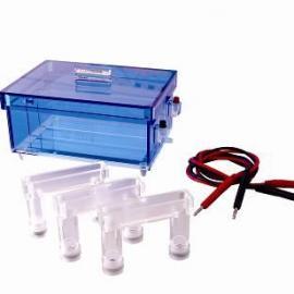 蛋白质回收电泳槽/DYCP-43蛋白回收电泳仪