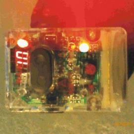 照明灯式呼救器 呼救器批发 呼救器定做 消防呼救器生产