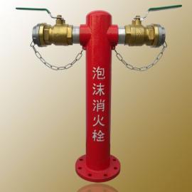室外地上式泡沫消火栓