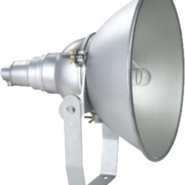 供应NTC9200-L1000防震投光灯