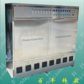 循环水臭氧消毒设备