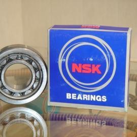 电机轴承NSK NN3009KCC1P4