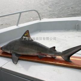 鱼类声学追踪系统/标记放流/标志放流