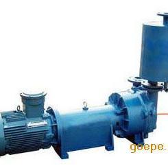 2BV6121防爆水�h式真空泵