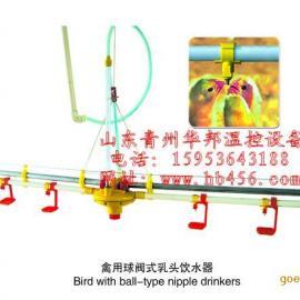 鸡用乳头式饮水器整套工程装备安装首选华邦