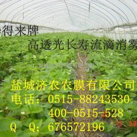 花卉温室大棚膜