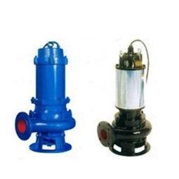 100JYWQ110-10-2000-5.5自动搅匀排污泵