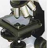 广州进口显微镜热台