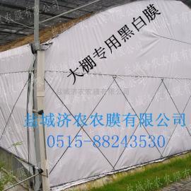 食用菌大棚专用遮阴黑白膜